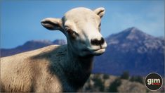 Elevate your workflow with the Animalia - Bighorn Sheep (pack) asset from gim. Find this & other Animals options on the Unity Asset Store. Unity, Sheep, Animation, Vector Graphics, Valentines, Character, Animals, Holiday Decor, Nature