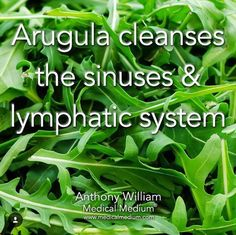 Hypothyroidism Diet - Arugula cleanses the sinuses lymphatic system Thyrotropin levels and risk of fatal coronary heart disease: the HUNT study. Health Facts, Health And Nutrition, Health And Wellness, Health Tips, Natural Health Remedies, Natural Cures, Natural Healing, Natural Treatments, Hypothyroidism Diet