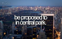 be proposed to in central park
