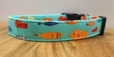 Fishy Business Funky Fish on A Bright Teal Blue Dog Collar