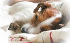 sleeping sweety <3