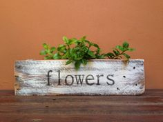 Wood Crafts, Diy And Crafts, Pallet Tray, Planter Boxes, Indoor Garden, Home Deco, Diy Gifts, Wood Projects, Decoupage