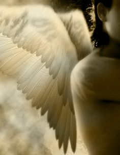 Angels Defined & How They Can Help You (Article)