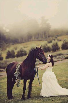 Eu ainda não te disse mais amo cavalos.