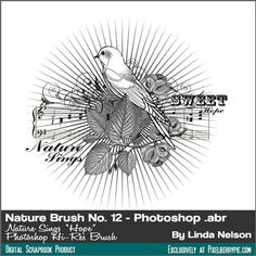 "Free Vintage Photoshop Brush Stamp {A ""nature-themed"" bird brush in .abr form}"