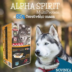 Krmivo Alpha spirit je superpremiové krmivo, které naleznete na bezednamiska.cz