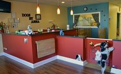 dog grooming salon layout i - Google Search
