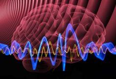 Understanding Brainwaves to Expand our Consciousness – Fractal Enlightenment Reprogramacion Mental, Mental Health, Neural Connections, Brain Tricks, Mind Tricks, Binaural Beats, Brain Waves, Brain Injury, Neuroscience