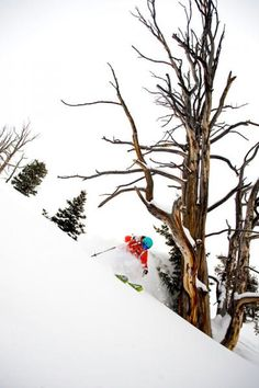 Solitude Utah. photo: Lee Cohen.
