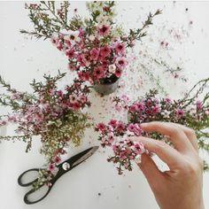 Little #flowers