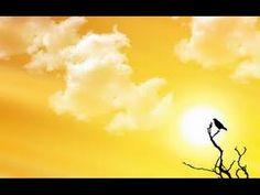 A lenda do uirapuru 3 versoes by Sheyla Tasso via slideshare 4k Wallpaper For Mobile, Bird Wallpaper, Summer Wallpaper, Computer Wallpaper, Positive Wallpapers, Hd Nature Wallpapers, Cute Wallpapers, Desktop Wallpapers, Yellow Sky