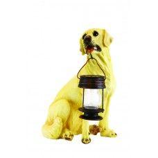 Yellow Labrador Dog With Lantern Solar Light