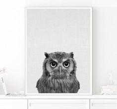 Owl Print Owl Decor Nursery Animal Owl Printable by TheModernTrend