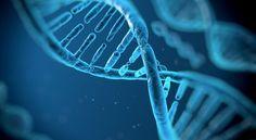 ساختار DNA یا آنچه سبب ماست چگونه است؟ یا با DNA آشنا شویم (بخش نخست)