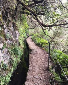 Before my dad told me we were going to Madeira on vacation I had never heard of it before and didn't know what I was signing up for, but Madeira completely exceeded my expectations and turned out. Buy Tickets, East Side, Small Towns, Paths, Portugal, Places To Go, Country Roads, Ocean, Island
