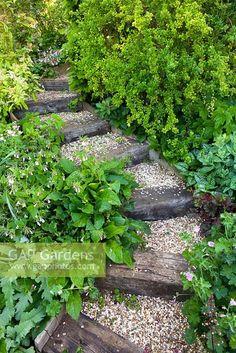 Steep Hillside Landscaping, Landscaping On A Hill, Hillside Garden, Landscape Stairs, Landscape Design, Sloped Garden, Sloped Backyard, Steep Gardens, Sleepers In Garden