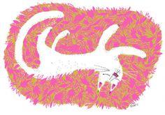 Nolan Pelletier #CAT
