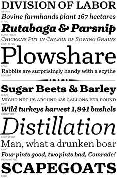 Turnip // David Jonathan Ross // Font Bureau  // Se maneja muy bien en cuerpos para epígrafes pequeños y microcuerpos. La cursiva es espectacular. ***