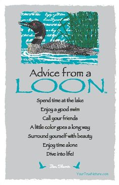 We often stop working to simply enjoy the call of the loons in the cove near our office. *** Repinned by your friends here at SuperHumanNaturals.com #Advice from a #Loon.