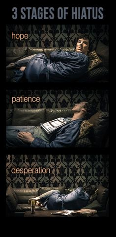 Stages of hiatus. Scarily accurate.