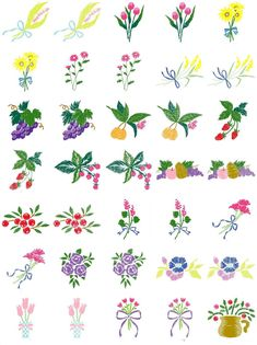Free Embroidery Designs Download | Floral & Fruit Brother Pes, Janome Sew, Husqvana Hus Designs Will be ...