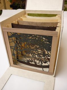 Choose, a tunnel book by Michele Anna DiFonzo. The book has no front or back, the viewer must choose her viewpoint. Choose is a tunnel book made up of six layers of handmade paper as well as Balsa wood and Walnut on the end pages. Each layer is cut by hand. Five of the layers are silhouettes of weeds while the sixth is a silhouette of the flower, Chrysanthemum. The box is made of book board, vellum, and Lokta paper (my new favorite).