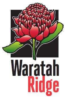 waratah - Google Search Australian Flowers, Google Search, Character