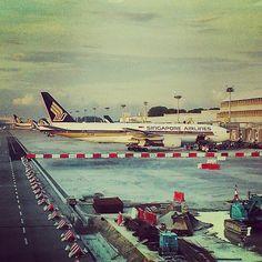 #singaporeairlines #boeing #b777 #changiairport