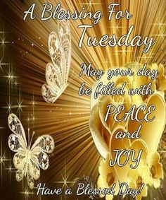 Good Morning, Happy Tuesday, I pray that you have a safe and blessed day! Happy Tuesday Pictures, Tuesday Images, Happy Tuesday Quotes, Inspiring Quotes Tumblr, Inspirational Words Of Wisdom, Tuesday Inspiration, Morning Inspiration, Morning Blessings, Morning Prayers