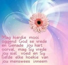 Image result for afrikaanse oggend versies Evening Greetings, Good Morning Greetings, Good Morning Good Night, Good Morning Wishes, Good Morning Quotes, Inspring Quotes, Lekker Dag, Afrikaanse Quotes, Goeie More