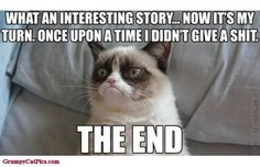 The world's grumpiest cat! 40+ Funniest Grumpy Cat Memes Pics #memes #cats ..... - Funny, meme