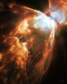 """The Bug Nebula (NGC 6302) with impressive walls of compressed gas, laced with trailing strands and bubbling outflows."""
