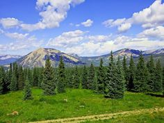 923 acre Colorado ranch for sale nearly completely surrounded by National Forest.
