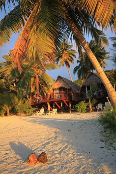 Coconuts and Beach Huts - Paradise Cove, Cook Islands