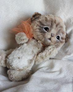 Купить Малыш Peter - бежевый, котенок, котенок-тедди, котята, Кошки, очарование, малыш