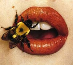 Irving Penn, Bee, New York, Courtesy Smithsonian American Art Museum. ©The Irving Penn Foundation Irving Penn, Beyond Beauty, Bee Sting, Orange Aesthetic, Contemporary Abstract Art, Lip Art, Art Reference, Artsy, Drawings