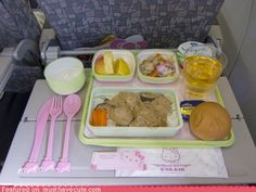 i wanna fly in hello kitty airlines :3