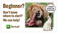 Great info. Wealth of information. Raw Cat Food for Do-It-Yourselfers - Feline Nutrition