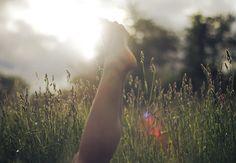 Sun Bathing   Flickr