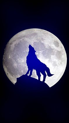 wolf moon wallpaper by dathys - - Free on ZEDGE™ Moon Wallpaper, Dark Black Wallpaper, Anime Wolf, Wolf Howling At Moon, Wolf And Moon, Elf Warrior, Neon Moon, Space Drawings, Wolf Artwork
