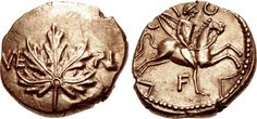 Gold Stater of Verica of the Atrebates & Regni, From the Vine Leaf Hoard of 2012 Found in Hampshire, England