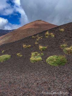 Mt. Etna -SandraZ