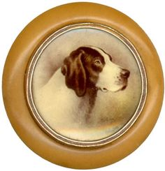 Antique vegetable ivory button with beautiful dog portrait. These were typically used on a hunting or sport jacket, c 1875.