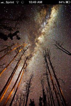 Stars(: