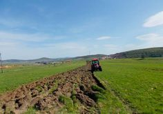 Preparing land for sowing oats