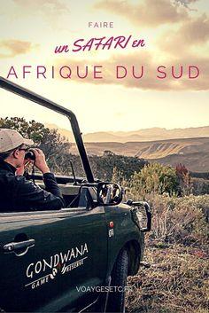 Faire un safari en Afrique du sud est une expérience incontournable. Je suis allée dans la Gondwana Game Reserve et vous raconte mon expérience