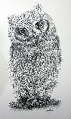 """Artist: Marilou G. Frias Screech Owl From the """"Stippled Birds""""  Collection --  Ink Drawings  https://www.facebook.com/mgfriasart"""