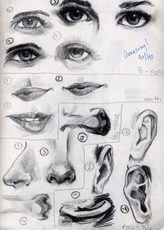Charcoal - Facial Features by Cat-s-Art.deviantart.com on @deviantART