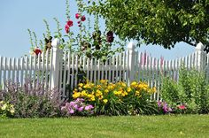 Beautiful Amish Yard