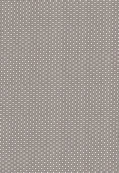 Fabric | Queen B in Dove | Schumacher